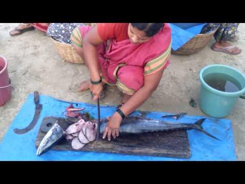 Fish cutting to malvan beach