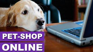 Pet Shop - As Vantagens de comprar online! - Quatro Patas