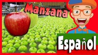 Frutas para Niños con Blippi | Tour por la Fábrica de Manzanas