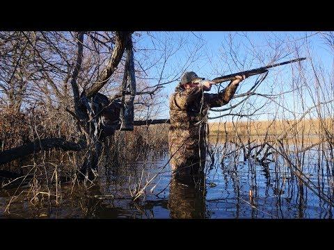 GreenHead Heaven!! Kansas Timber Duck Hunt