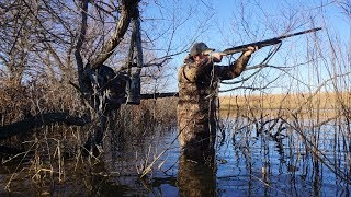 greenhead-heaven-kansas-timber-duck-hunt