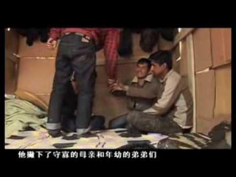 Afghan Migrants (Chinese)
