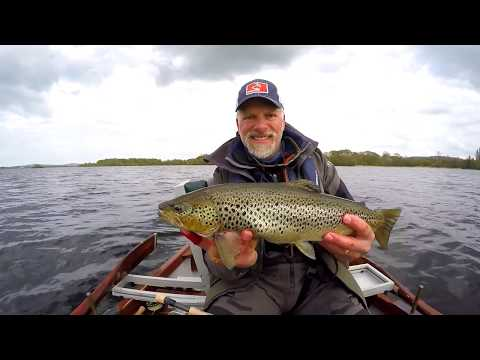 GUIDED FLY FISHING FOR WILD BROWN TROUT ON LOUGH SHEELIN , IRELAND