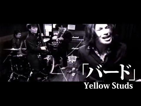 YellowStuds  バードPV
