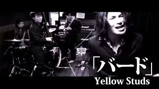 YellowStuds  バードPV