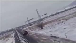 Вчера в Тюменской области поезд сбил корову которая перебегала через железную дорогу!!!
