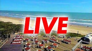 Preview of stream Live Stream - Hilton Garden Inn & La Quinta Beach South Padre Island Webcam
