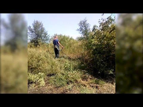 В Волгоградской области «наскирдовали» коноплю под присмотром полицейских