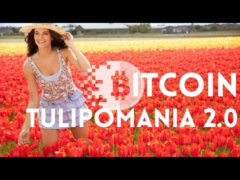 !BITCOIN TULIPOMANIA 2.0!