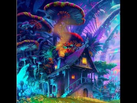 World Of Liquid Mushrooms - Crocoloko