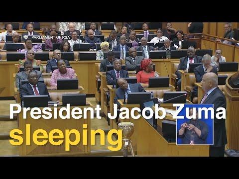 Zuma falls asleep during Gordhan's mid-term budget speech