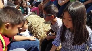 Demarest Farms 2016