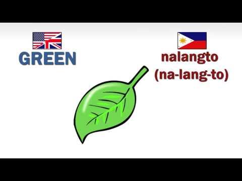 How to speak Ilokano (Ilocano) - Colors  (Part 1)