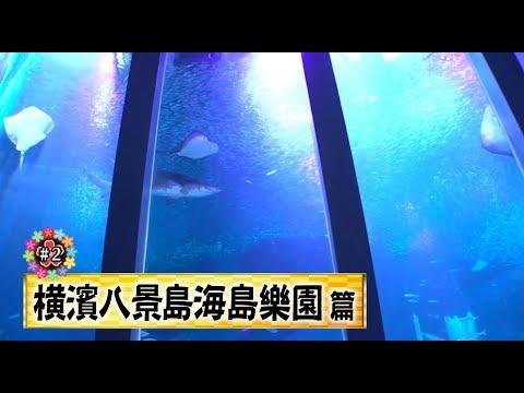「★吉田社長爆烈頻道★」:來去「橫濱八景島海島樂園」感受海洋魅力