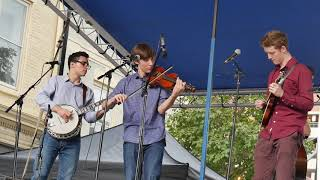 Carolina Pinecones at The Open Wide Bluegrass Festival