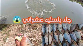 مفاجأة الصيد بلسلية 😃