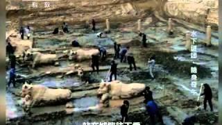 20150710 地理中国  水下谜团·隐身奇牛