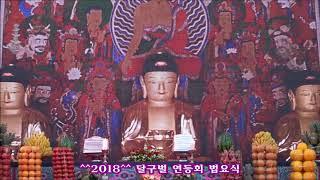 ♥불기2562년 (2018) 부처님오신날 달구벌 연등회법요식 ♥^^2018^^ 형형색색 달구벌 관등놀이