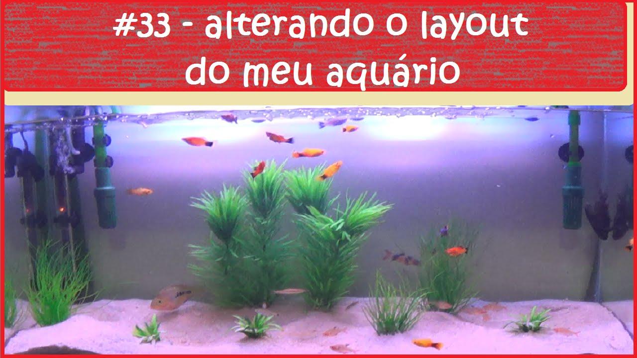 Mudando o layout do meu aquário - #EP33