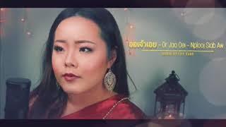 Lily Vang- Nplooj Siab Aw- ออเจ้าเอย (Or Jao Oei) COVER
