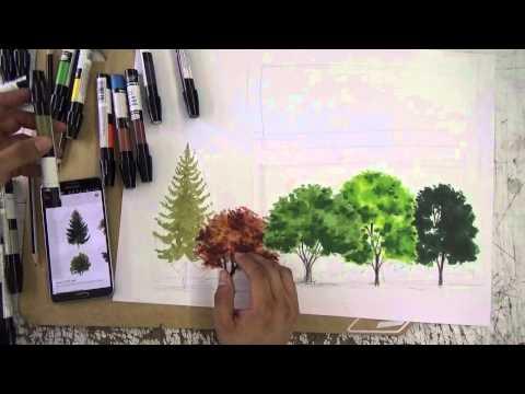 chartpak  lapices de color Arboles  YouTube