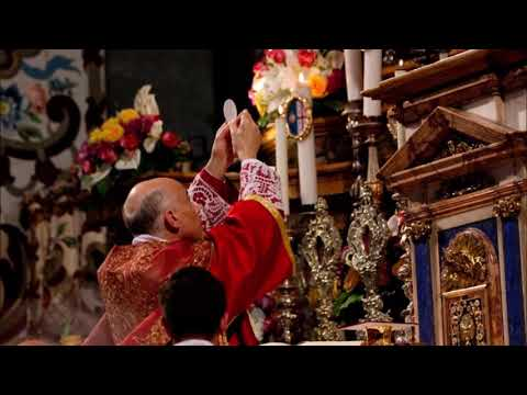 Traditionalist Challenge ~ Fr Ripperger
