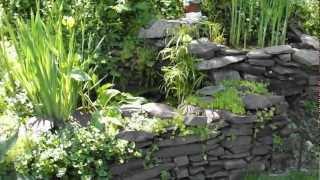 Diy Homemade Fish Pond / Water Garden. No Kit.