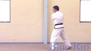Saju Jirugi - 4 direction right punch - Chang Hon Taekwondo Tul - 10th kup white belt
