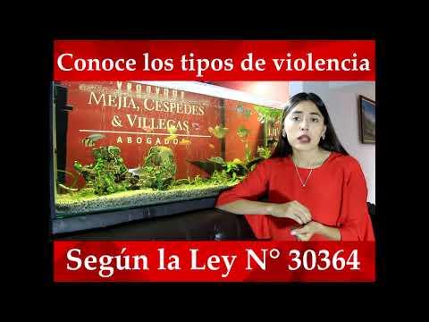 ¿Sabes Cuáles Son Los Tipos De Violencia Que Regula La Ley N° 30364?