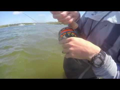 2015 Cheeky Fly Fishing Tourney - Team Why Knot Fishing - Cape Cod, MA