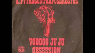 K.Pythacunthapuserectus - Voodoo Ju Ju Obsession part 2 (1969)