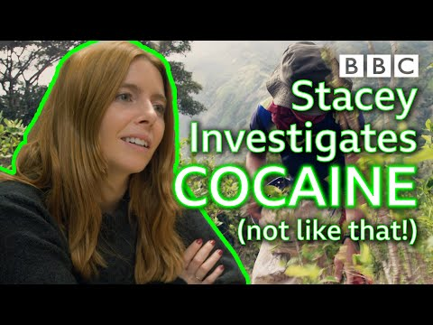 How does a top Colombian smuggler get cocaine past Europe's sniffer dogs? - BBC