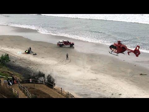 Shark Attack- 13-year-old Boy Injured Near San Diego