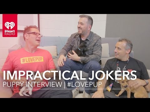 Impractical Jokers Puppy Interview | #LovePup with Johnjay