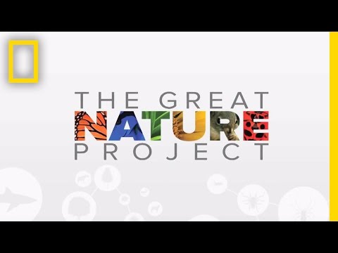 National Geographic's Great Nature Project | National Geographic