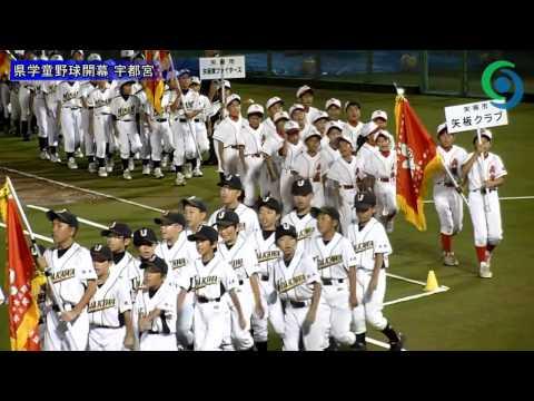 佐野市野球協会 学童野球の部 -