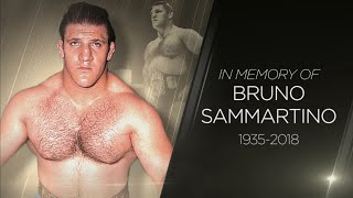 WWE pays tribute to Bruno Sammartino