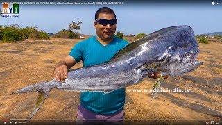 Extremely Big Fish  #BIG HEAD FISH BBQ