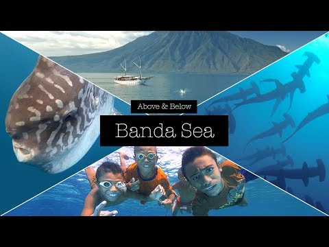 Above & Below - Banda Sea