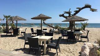 ►Saint-Cyprien : Caliente, restaurant incontournable du littoral méditerranéen - Le Journal Catalan