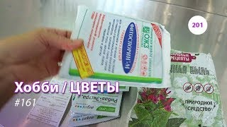 201#161 / Хобби-Цветы / 08.2019 - ЛЕРУА МЕРЛЕН (ТК ТРОЙКА. МОСКВА). ОБЗОР