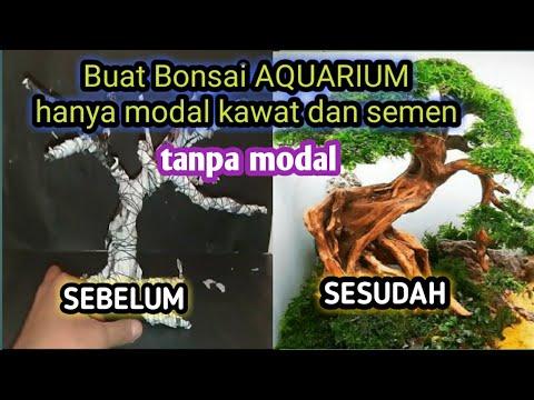 wow-mudah-cara-membuat-pohon-bonsai-untuk-akuarium-aquascape-dengan-kawat-dan-semen