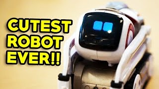 THE CUTEST ROBOT EVER!!