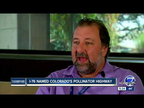 I-76 named Colorado's Pollinator Highway