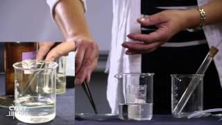 Hemija - Alkalni metali: natrijum (Na) i kalijum (K)