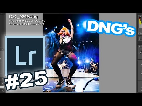 Lightroom 30 for 30 #25 Quick Tip: How To Convert To DNG and Why You Would