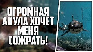 прячься от этой Белой Акулы в Shark Attack Deathmatch 2 - Multiplayer #1