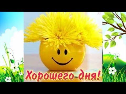 Удачного дня - Петербург)