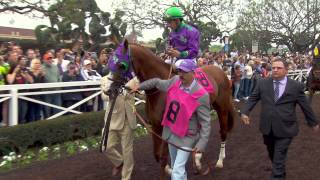 Shared Belief, California Chrome, and Dortmund Goes TVG 360 | Feb. 7th, 2015