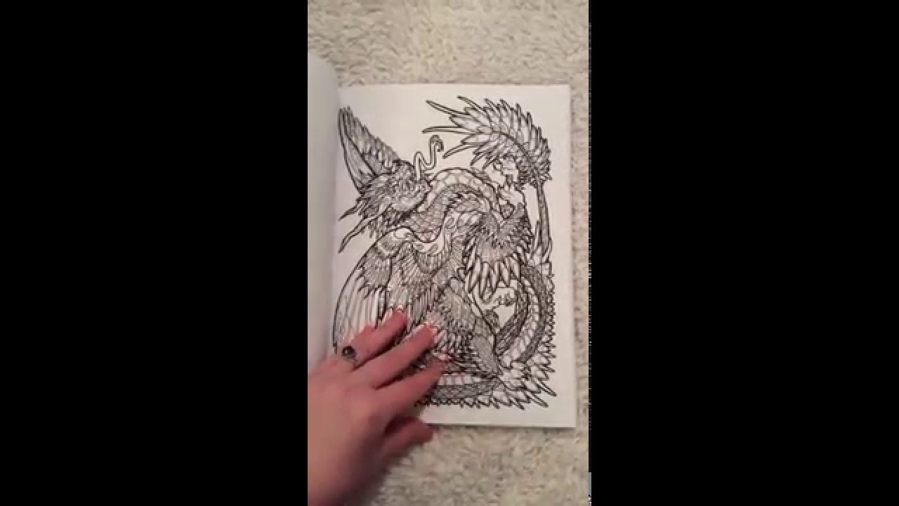 Adult Coloring Book Dragon Adventure Amazon Review
